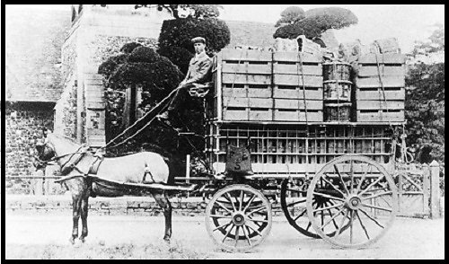 A Gibbs strawberry van, owned by Fred Emmett, Brook Farm, Stanwell, Middlesex.  The van man is believed to be C. Cox.  Circa 1900.