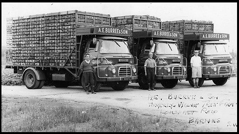 Market lorries built on to Austin chassis by Gibbs for A.E. Burree and Sons of Barnes.