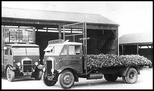 An Albion lorry loaded with root vegetables belonging to W.R. Bennett of Bedfont.