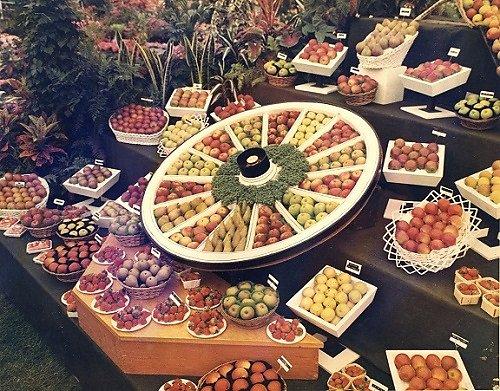 The Strawberry Wheel